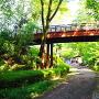 空堀と大手橋