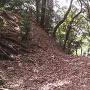 二の木戸跡にある竪堀を上から見る