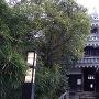 本丸丑寅櫓の入り口