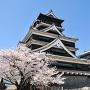 桜咲く熊本城[提供:キロクマ!]