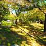 土塁◆公園側