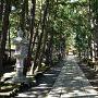 慶元寺 杉並木