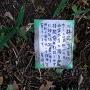勝手神社さんからのメッセージ