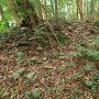 蛭子神社 北端の土塁と丸石(2)