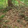 蛭子神社 北端の土塁と丸石(1)
