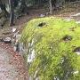 苗木城の岩の柱穴