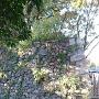 本町橋に残る石垣其の弐(左側正面から)