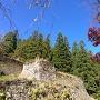 岩村城本丸石垣と紅葉