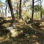 本城跡と石垣跡
