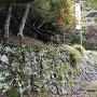 穴太積石垣