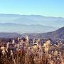 真田本城跡から望む砥石城跡と上田市街