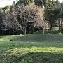 段曲輪跡@一郭(板井熊野座神社)北側