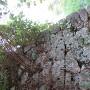 郭5の石垣