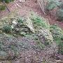 井戸曲輪(水の手曲輪)の石垣