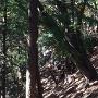 山の斜面にある石垣