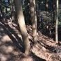 竪堀も発見