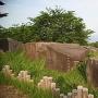 移設された石垣用石材