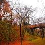 晩秋の桜雲橋