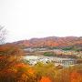 千曲川と紅葉