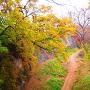 白鶴橋から木谷を望む