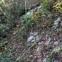 草に埋もれる石垣