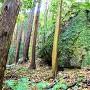 登城道の巨岩