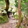 登城道を塞ぐ巨石群