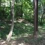 森の中の土塁