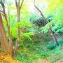 空堀◆西曲輪北側