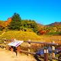 惣堀・土塁◆大手門跡
