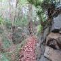 村上神社の石垣