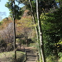 東郭から見た土橋