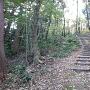 山頂までの階段