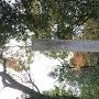 鷺山城跡の碑
