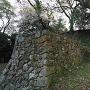 南の丸東側石垣