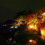 城址ライトアップ風景