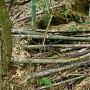 登城道の井戸跡