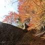 石垣と紅葉その1