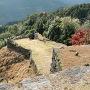 石垣と紅葉その6