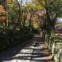百済寺参道
