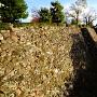 石垣(本丸西側)
