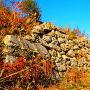 東曲輪跡にある石垣