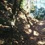 露垂根神社方向へ行く途中にある堀切