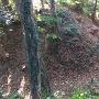 露垂根神社方向にあるクランク状の堀切