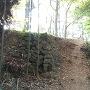 西の丸の石垣