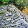 鶴の渓から見る石垣