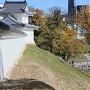 東隅櫓と発掘調査現場