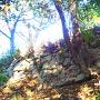 Ⅲ郭東側の石垣