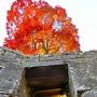紅葉と埋門