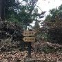 急坂の途中。左、幸山城。右、福山城。